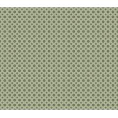 Poá tom tom - Poá verde - 0,50cm x 1,50m